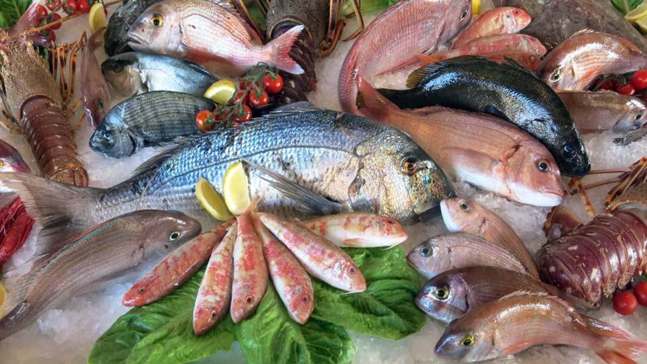 Comment cuisiner le poisson ?