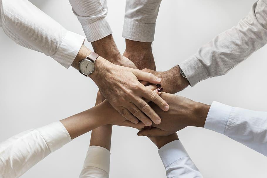Top 5 des meilleurs team building à faire au bureau